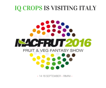 MACFRUT 2016 EXHIBITION – ITALY